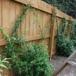 decatur wood fencing
