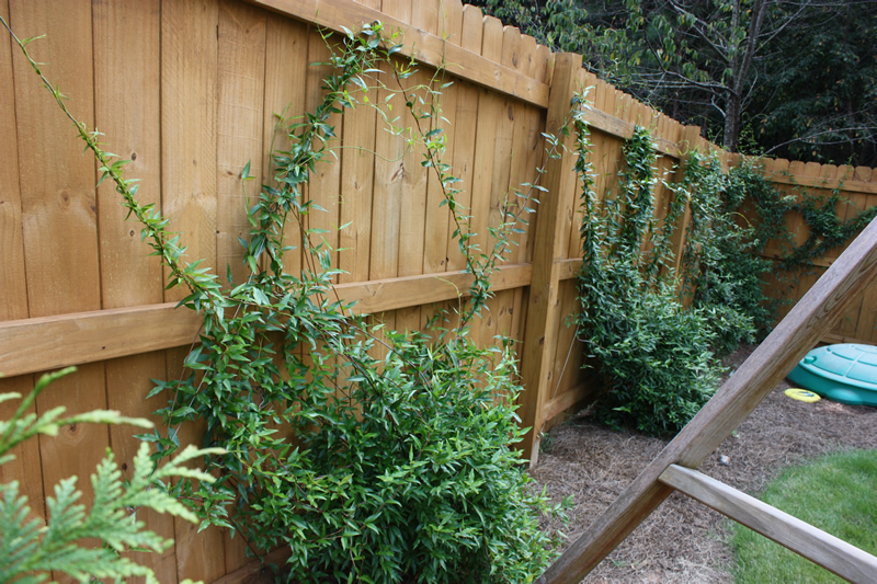 decatur wood fencing