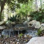 decatur landscape water features